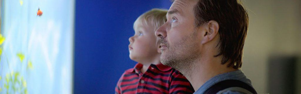 8-creative-ways-for-dads-to-spend-time-with-their-toddlers
