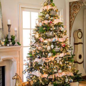 Celebrating Advent 5