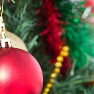 Christmas Day 3