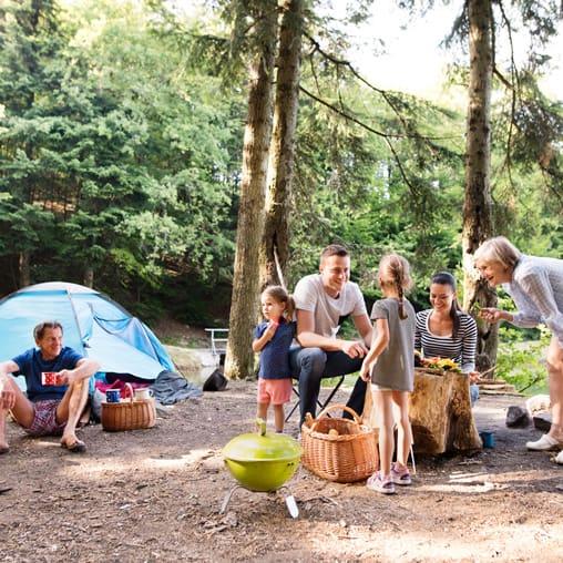 Cousins Camp